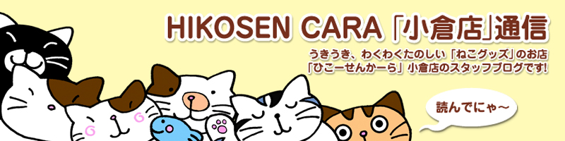 HIKOSEN CARA「小倉店」通信